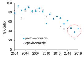 Azole septoria activity declining