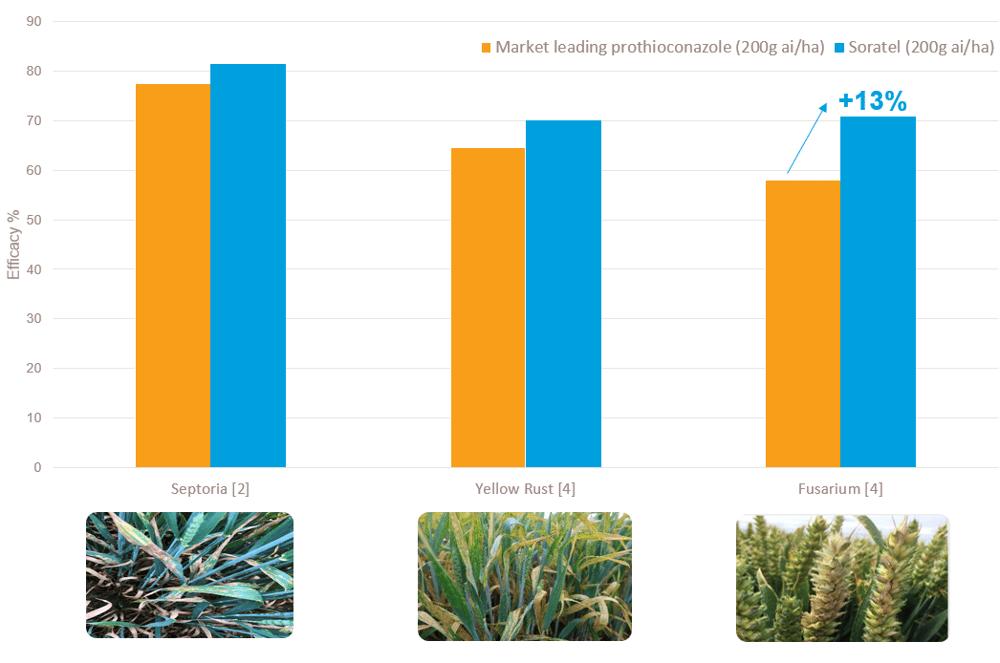 soratel wheat trial graph